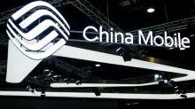 En plein bras de fer avec Pékin, les Etats-Unis rejettent China Mobile