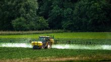 """Glyphosate : """"Des alternatives sont déjà pertinentes et vivables pour les paysans"""""""