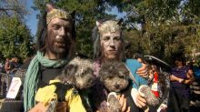 7 best costumes at annual Tompkins Square Halloween Dog Parade