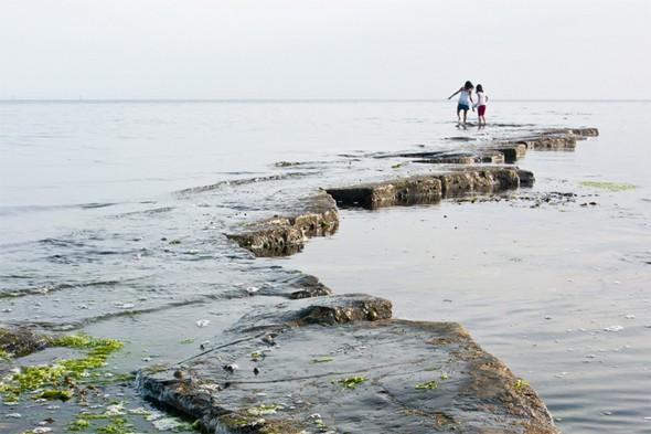 "<p>Looking for a fun day out with the kids? The <a href=""http://www.southwestcoastpath.com/walksdb/282/"" target=""_blank"">Kimmeridge Ledges</a> provide some of the best rockpooling along the Jurassic Coast at low tide - perfect for little ones, and older children will enjoy the circular walk around Kimmeridge Bay, which runs along a chalk ridge with great views over the coast and countryside. The route continues past Clavell's Tower, built in 1830 as an observatory and folly, before leading you to the Purbeck Marine Wildlife Reserve in the bay and the picturesque thatched village of Kimmeridge. <strong>Best for: An epic family day out.</strong></p>"