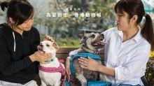 習慣寵愛:為愛而生,香港動物報