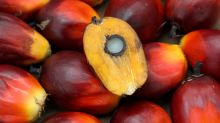 Malaysia says still open to filing WTO suit against EU on palm oil