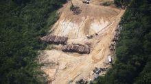 Brésil : déforestation record de l'Amazonie au premier semestre 2020