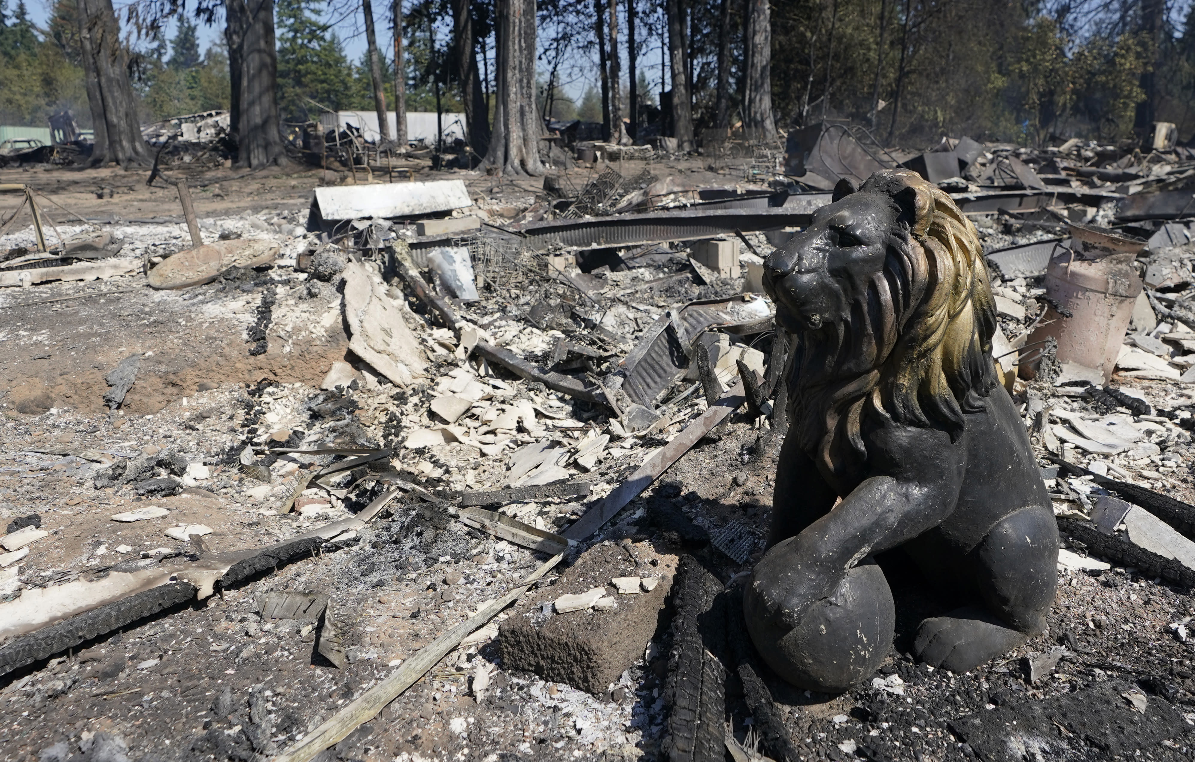A decorate lion sculpture is shown charred by fire, Tuesday, Sept. 8, 2020, after a wildfire destroyed homes and outbuildings in Graham, Wash., overnight south of Seattle. (AP Photo/Ted S. Warren)