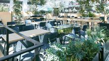 At Tokyo's greenhouse Starbucks, enjoy your coffee among beautiful greenery