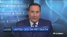 United CEO: We are reviewing options for pet transport