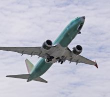 Trending: Bird Strike might have caused Boeing 737 Max 8 crash, garlic farmers profit from trade war, new Coca-Cola returns
