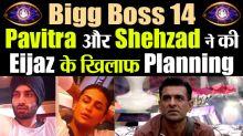 Bigg Boss 14: Pavitra and Shehzad Plans against Eijaz Khan