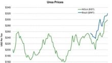 Urea Prices Rose in the Week Ending September 21