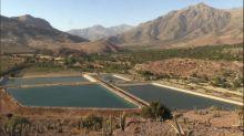 Petorca, el símbolo de la guerra por el agua en Chile