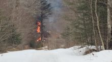Cape Breton's largest sugar maple operation burns to the ground