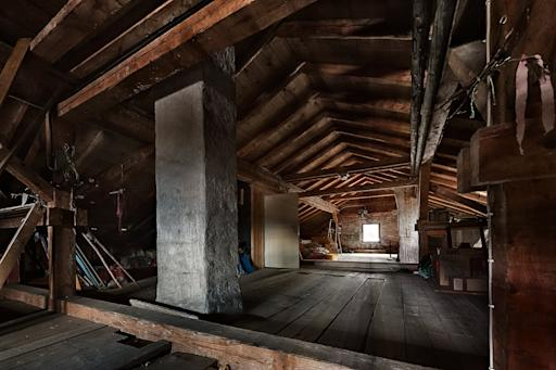 The Scariest Thing in Your Attic Isn't a Ghost: Meet the