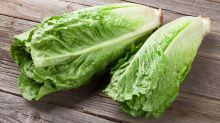 E. coli outbreak linked to romaine lettuce