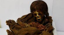 Tras casi 130 años: EE.UU. devuelve la momia de una niña inca a Bolivia