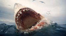 Fintech Won't Keep the Loan Sharks from the Door