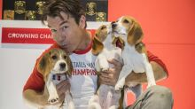 Jerry O'Connell on guest-hosting the 'Super Bowl of dog competitions'