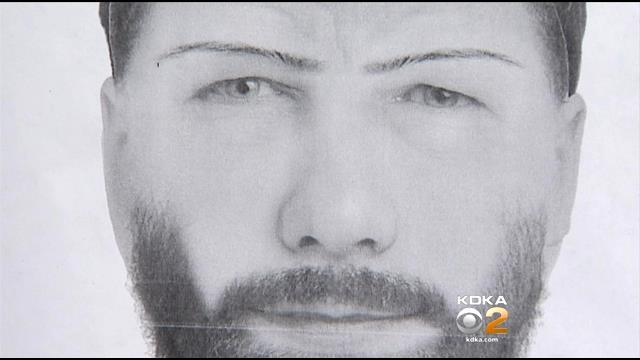 Police Search For Suspect After Hempfield Attempted Luring