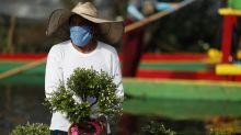México: Autoridades temen estancamiento de casos de COVID-19