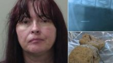 Mail Carrier Fed Meatballs Filled With Nails To Dog On Her Route: Cops