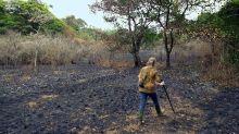 Casal passa 26 anos replantando floresta e o resultado é incrível