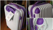 根本係菲利! 日本網民行李喼撞樣Twitter熱傳