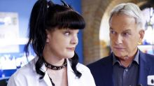 Inside the 'NCIS' Mess: How a Dog Bite Kept Pauley Perrette and Mark Harmon Apart on Set