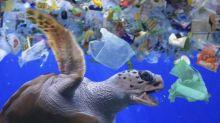 Plastique dans les océans : si on continue comme ça, il y en aura trois fois plus dans 20 ans