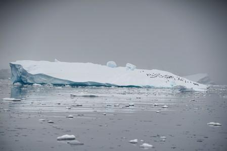 'Artificial snow' could save stricken Antarctic ice sheet