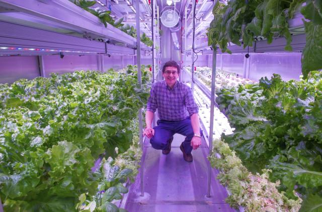 Hydroponic gardens could end Arctic food shortages