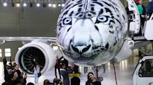 Plane painted with incredible snow leopard portrait to draw attention to the endangered animal