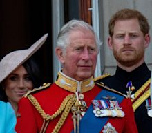 Prince Harry said Charles 'stopped taking my calls' before the couple announced their step back from the royal family