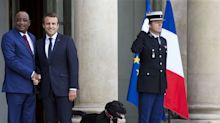 'Oui oui': Watch moment Macron's dog takes pee during government meeting