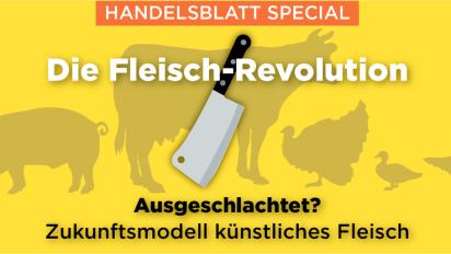 Die Fleisch-Revolution