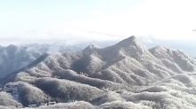 Stunning drone footage captures trees covered in rime ice, which forms when super-cooled liquid freezes onto surfaces