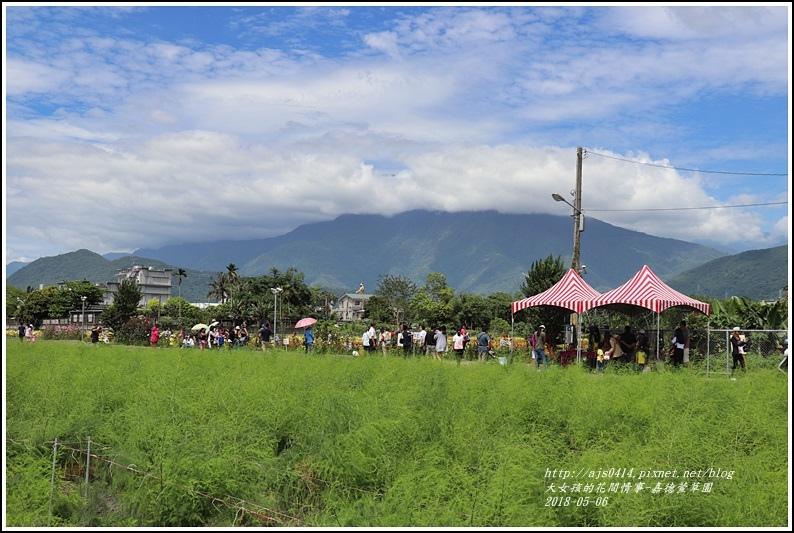 嘉德萱草園-2018-05-41.jpg