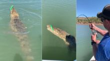 Man Versus Crocodile Battle As Fisherman Reels In Massive Saltwater Beast