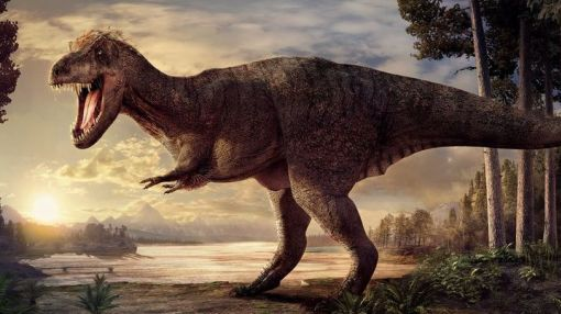 A 66-million-year-old T. rex is about to fly from Chicago to Amsterdam