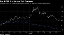 Pot Companies Shed Real Estate Amid Dearth of Financing Options