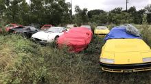 A fleet of classic Ferraris were left to rot in a field