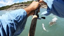 'That's epic': Incredible moment croc tries to steal fisherman's catch