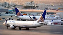 Dog Dies On United Flight After Passenger Forced To Put Carrier In Overhead Bin