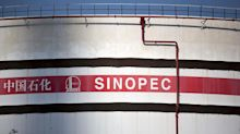 China's Sinopec expects to double foreign investment to more than $30 billion