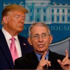 Trump's top aide Dan Scavino shares a cartoon mocking Fauci after White House claims it isn't undermining the coronavirus expert