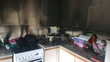 Bad dog! Family pooch sets his owner's kitchen on fire by jumping up on cooker