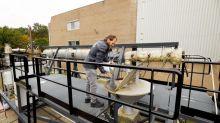 La última propuesta de combustible sostenible: polvo de hierro