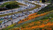 Miles de turistas obsesionados con las amapolas en flor bloquean un pueblo californiano