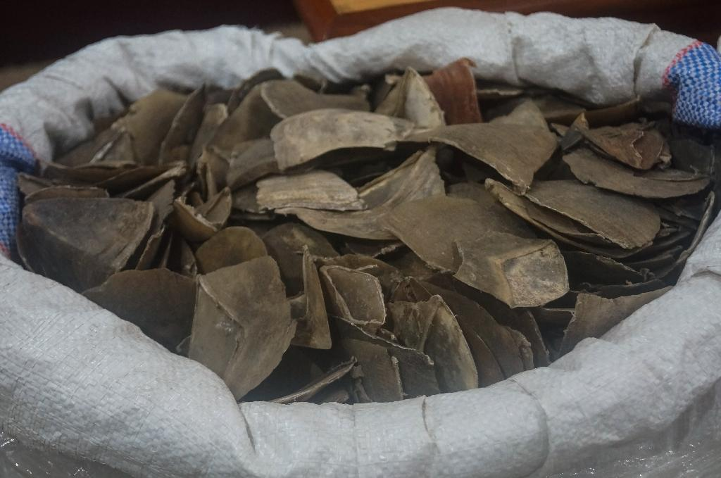 The pangolin scales were said to be destined for Asia (AFP Photo/Handout)
