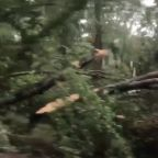 Several Tornadoes Touch Down in Virginia During Storm Isaias
