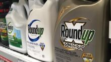 Judge to reassess $80 million award in Monsanto cancer case