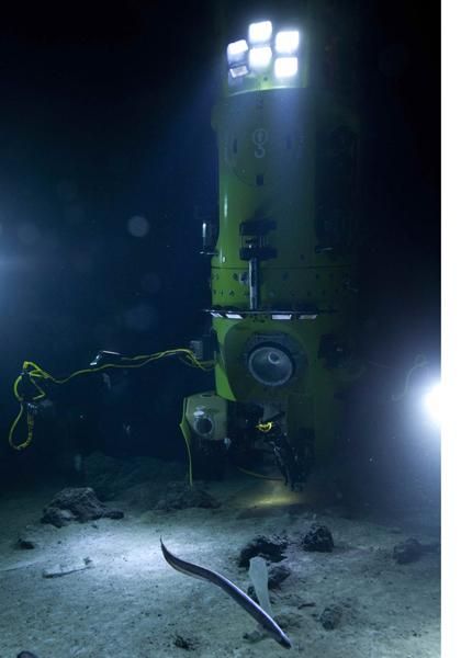 The historic Deepsea Challenge submersible.